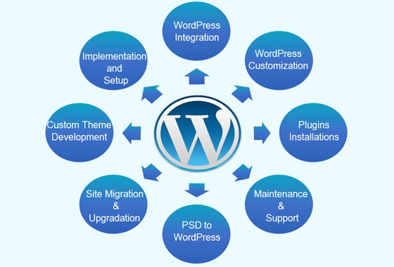 Website Development in Kuwait